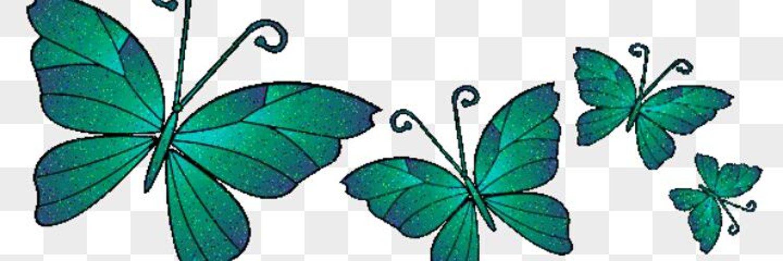 Картинки анимации бабочки для презентации