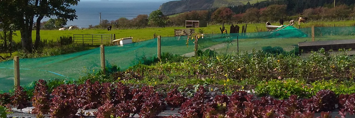 Woodside Arran is a social enterprise on the beautiful island of Arran set up to create and maintain a robust and diverse local food network.