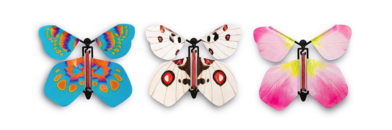 Истории картинках, вылетающая из открытки бабочка
