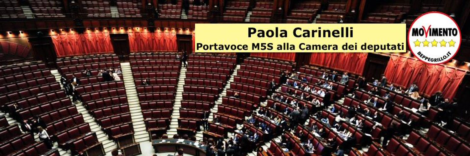 On. PAOLA CARINELLI Onorevole of the Chamber of Deputies