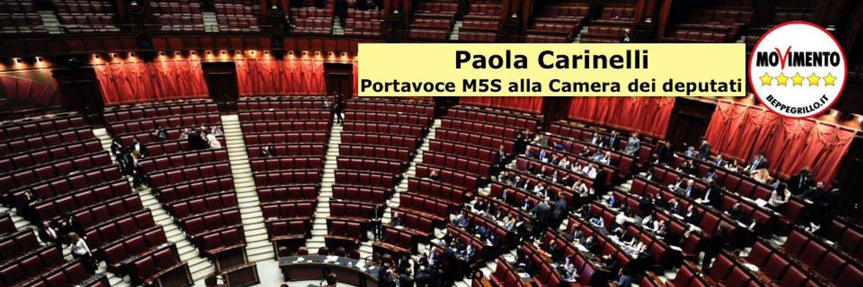 On. PAOLA CARINELLI Onorevole della Camera dei Deputati