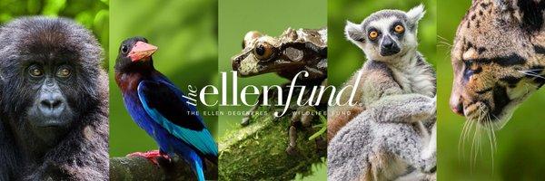The Ellen Fund Profile Banner