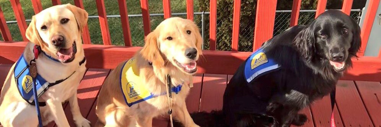 @SI_ExtraMustard Clint is an Assistance Dog in Training with @ccicanine 💙💙💙. Like me, he will someday work as a dream to give a child, adult or veteran with a disability the independence and dignity they deserve! #GiveADogAJob
