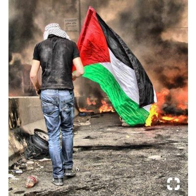 🇵🇸 New Palestine Movement (NPM)