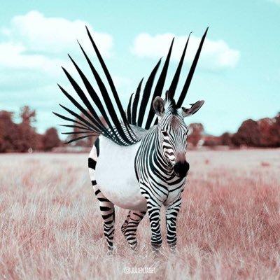 ZNN Social Zebra Digital Breaking Real News  🇺🇸  🦓
