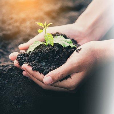 Big Soil Community