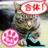雉猫 🇯🇵台灣加油🇹🇼 (ネトウヨでいいよ) (@kiji_neko)