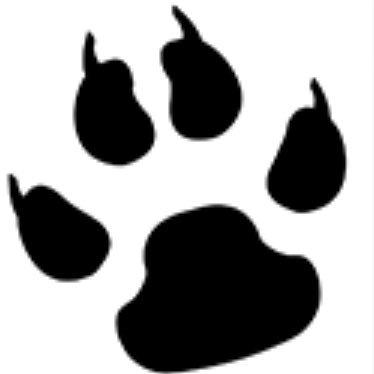 BearCreekES (@BearCreekES) Twitter profile photo