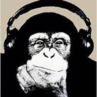 chimp_caray