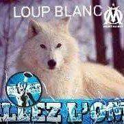 Le Loup Blanc On Twitter Bon Anniversaire à Nos Bleus 98 Bleus