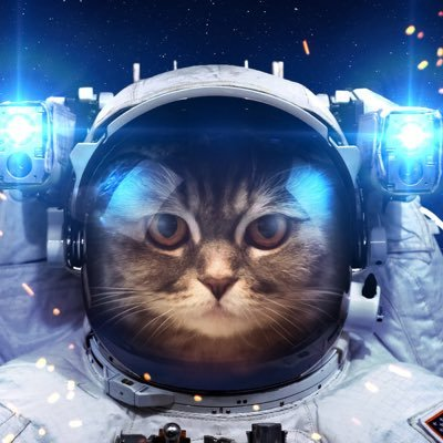TooncesTeslaInOrbit-SPACE FORCE  🌎  💫  🚀