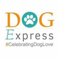 Dog Express.in