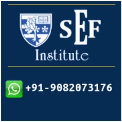 SEF Institute