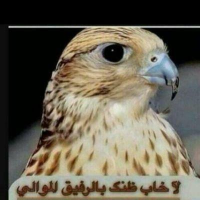 @khalqaht