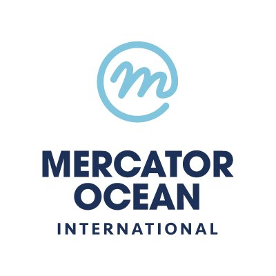Image result for mercator ocean""