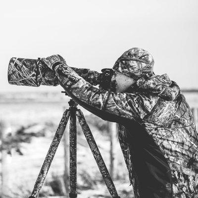 Stephen A. Waycott Wildlife Photography
