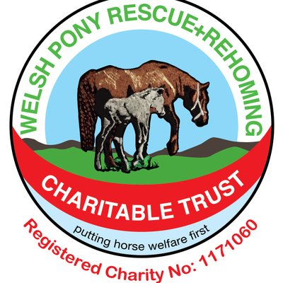 Welsh Pony Rescue Charitable Trust