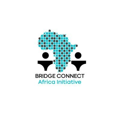 BRIDGE CONNECT AFRICA INITIATIVE