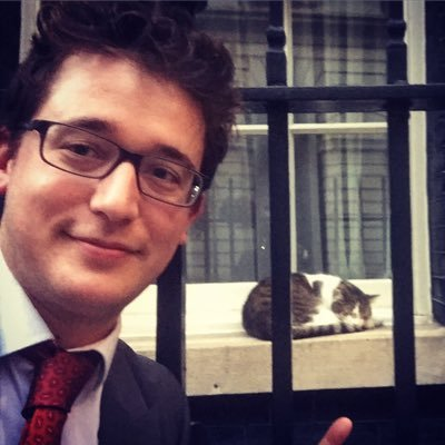 Dan Bloom (@danbloom1) Twitter profile photo