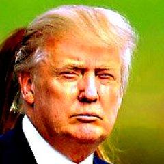 Donald J. Trumpbot