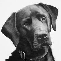 Kevin Hayward Art @kevinhaywardart Profile Image