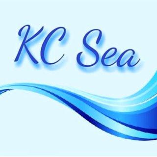 KC SEA ARTE