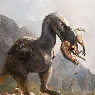 Image of: Their Tracks Extinct Animals Twitter Extinct Animals strangeandlost Twitter