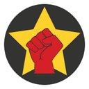 الاشتراكيون الثوريون