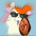 810_hamster