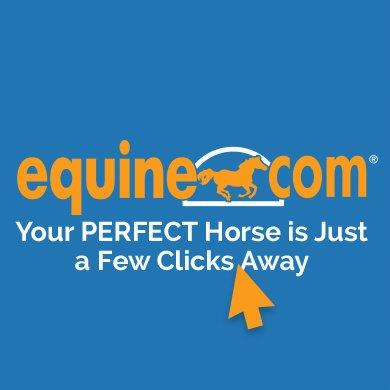 @equine_com