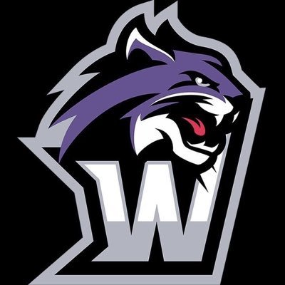 Wiley Athletics (@Wile...