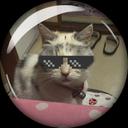 nishi_cat1213