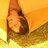 Viv Youell #DrawOneTree 🕷