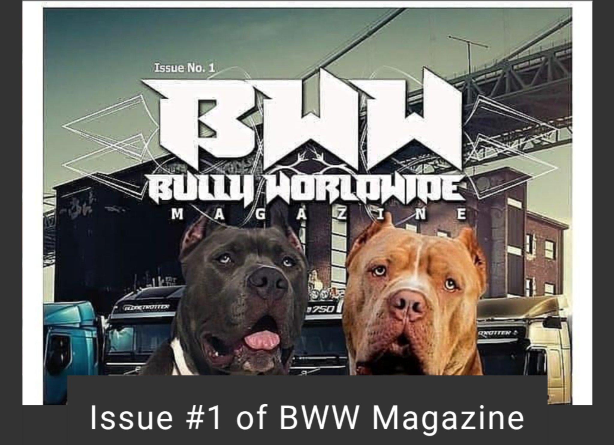 Bullyworldwide