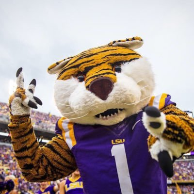 Mike The Tiger Lsumiketiger Twitter