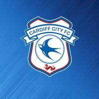 Did Cardiff City win today?