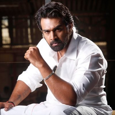Image result for chiru sarja