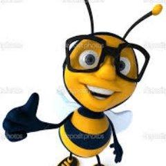 Stinger Bee #NyayForIndia