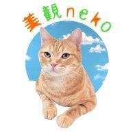 猫カフェ 美観neko