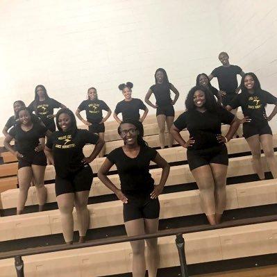 Dancing Hornettes 💙💛🐝 (@The_MCDT) | Twitter