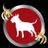 Bull Terrier /ブルテリア
