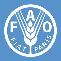 FAO ( @FAO ) Twitter Profile