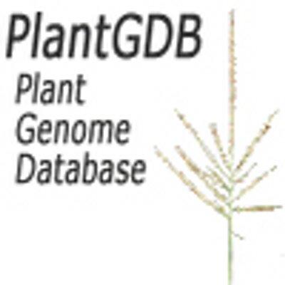 PlantGDB