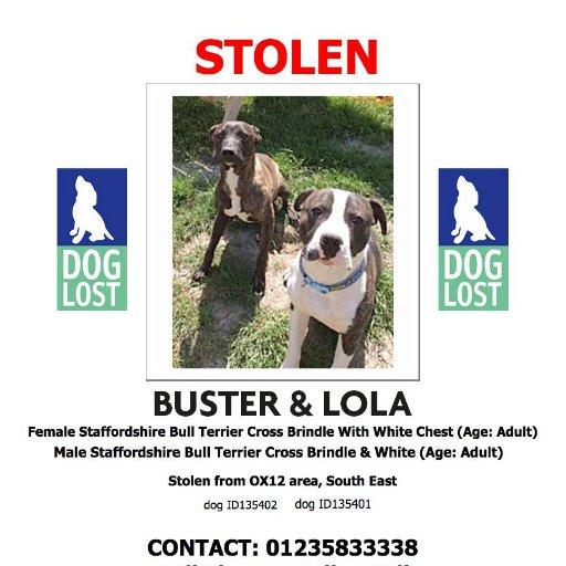 Buster & Lola