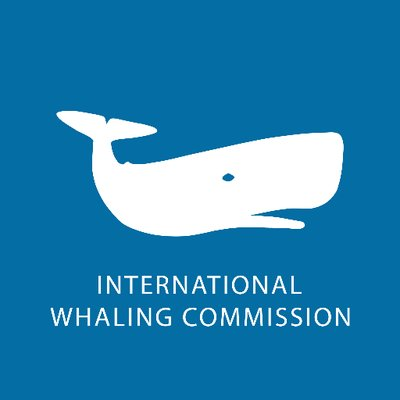 International Whaling Commission (@iwc_int) | Twitter