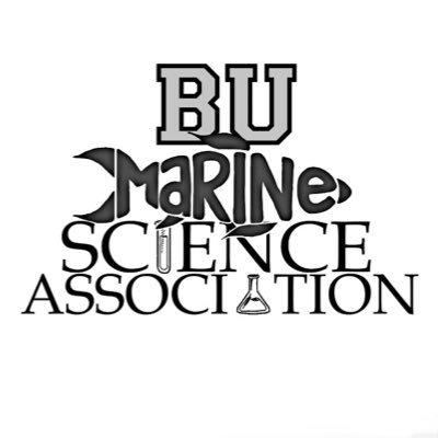 Marine Science Association (@MSAatBU) | Twitter