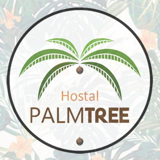 @palmtreehostal