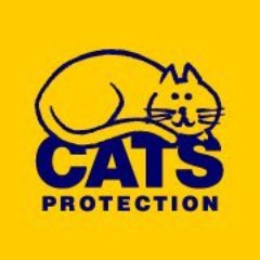 Cats Protection Exeter Axhayes A/C