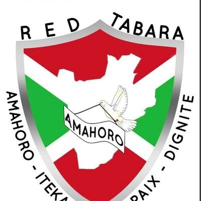 """RED Tabara on Twitter: """"Press release of @Red_Tabara following the Final  Declaration of Mini-summit organized at the initiative of President of  #DRC, HE Félix TSHISEKEDI @fatshi13 on 07/10/2020 by videoconference with  his"""