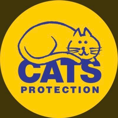 Newbury Cats Protection